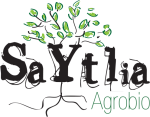 logo Saytlia