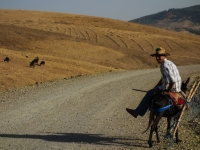 Un paysan sur son âne